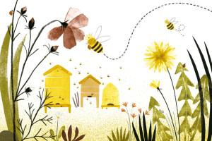 abeille-apercu